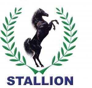 Stallion-Group